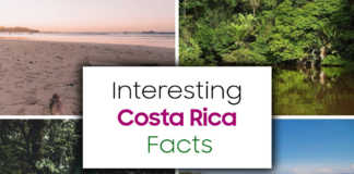Interesting Costa Rica Facts That You Might Not Know About