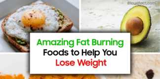 Amazing Fat-Burning Foods to Help You Lose Weight