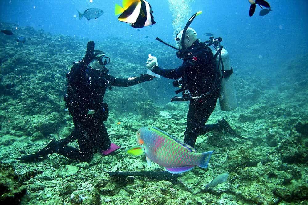 Underwater Proposal